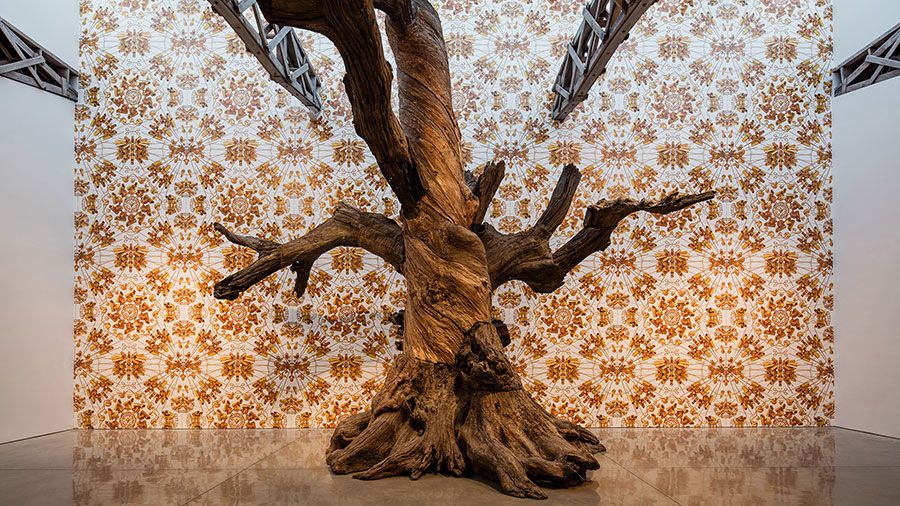 Ai Weiwei 2016: Roots and Branches